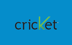 cricket_spons.jpg